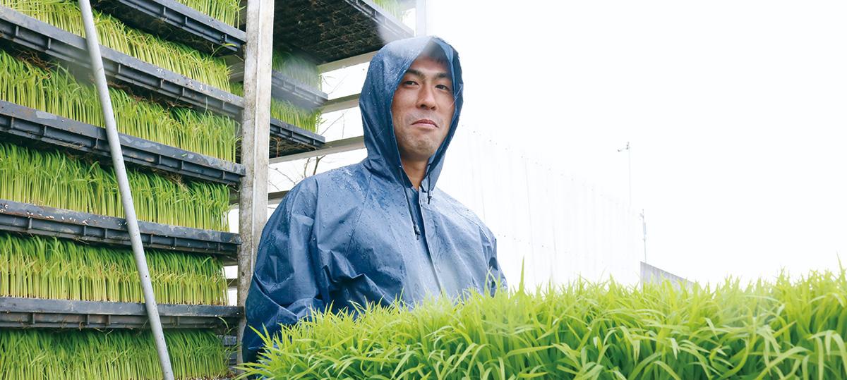 中村農産 代表:中村 正弘